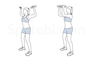 standing-chest-fly-exercise-illustration.jpg