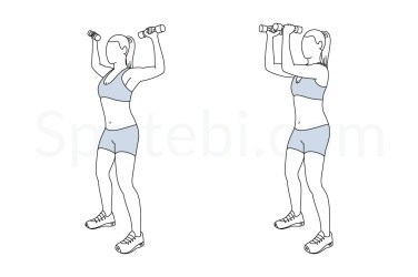 standing-chest-fly-exercise-illustration.jpg